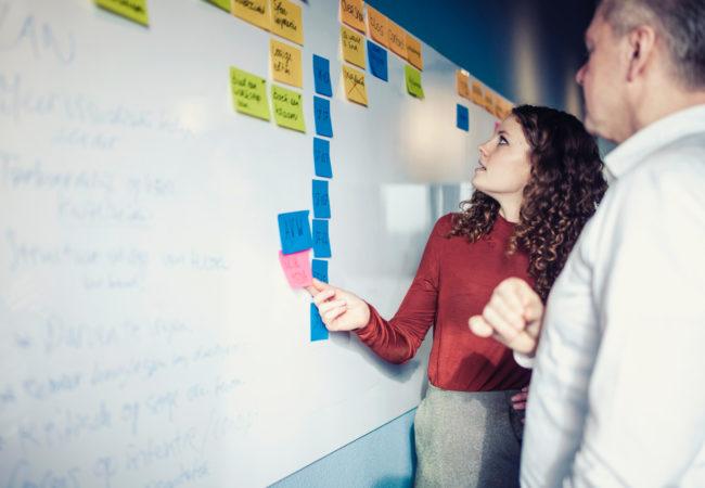 Het programma digital design schaalplus